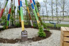 Lehrgarten_Mai26