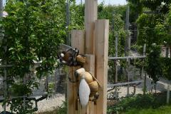 Bienen06_Juni
