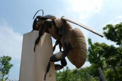 Bienen08_Juni