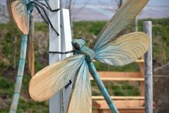 Libellen02