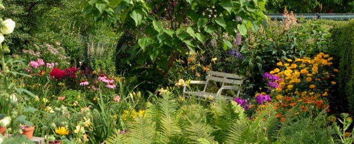 Naturgarten (Foto: Dr. Manfred Kotzian)
