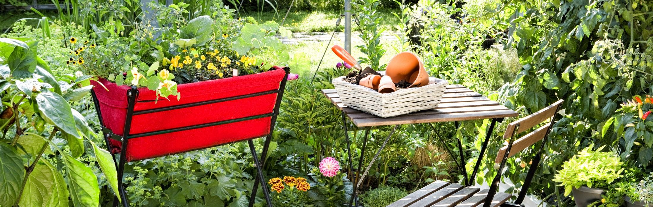 Terrassenbeet (Foto: Thomas Jaksch)